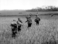 GI1-1952-troupes francaises.png